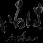 Hyperledger participa do projeto 'IROHA'