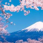 Japão: lojas que aceitam BTC quadruplicam