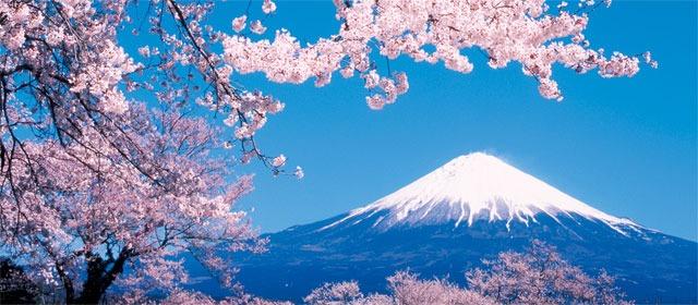 Mais duas plataformas criptomonetárias começaram a reduzir suas atividades no Japão na véspera de seu iminente fechamento. As corretoras Mr. Exchange e Tokyo GateWay retiraram pedidos anteriores de licenças da Agência de Serviços Financeiros (FSA)