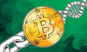 A porcentagem de blocos que estão sinalizando suporte para o Bitcoin Unlimited superou o Segregated Witness, tornando-a a solução mais popular no momento.
