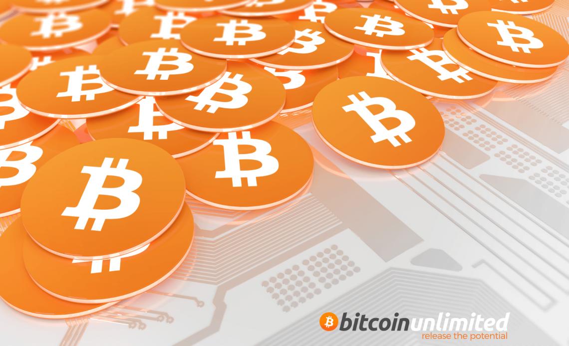 Roger Ver é aficionado pelo Bitcoin, nesse momento ele acredita que Unlimited é a melhor opção para o aumento de bloco da rede e esta investindo nisso.