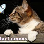 Stellar lança rede global de pagamentos Lightyear