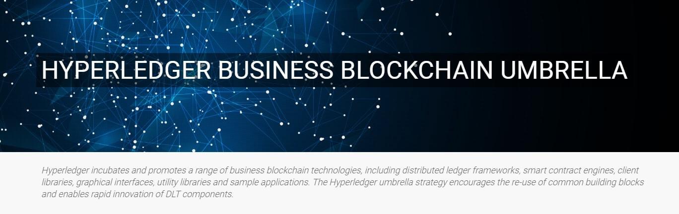 O projeto de blockchain da Hyperledger, patrocinado pela Linux Foundation, ficou um pouco maior nesta semana com a adição dos projetos Indy e Composer.