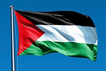 O chefe da Autoridade Monetária da Palestina, o Banco Central emergente da Palestina, revelou que tem planos de lançar uma moeda digital própria.