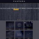 Pantera Capital perde quase 50% dos ativos em março