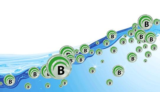bitquence liquidity network