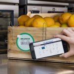 IBM, Walmart e Nestlé juntam-se em blockchain