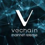 VeChain traz soluções de logística para empresas e seus parceiros através da Blockchain