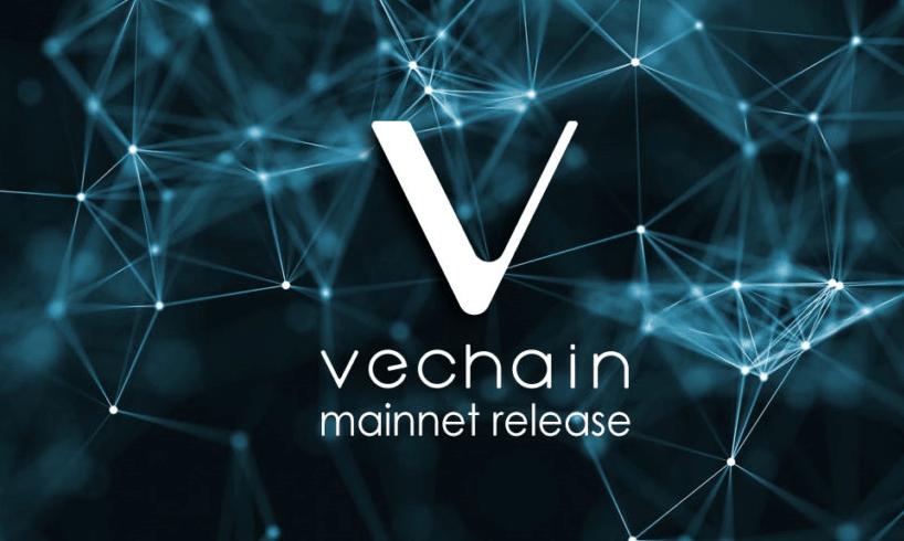 No dia 2 de julho, a VeChain anunciou sua nova carteira mobile que inclui recursos marcantes, boa parte sugeridos pelos seus usuários. Todos os dApps poderão ser acessados pelo aplicativo móvel, algo realmente inovador no universo da Blockchain.