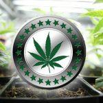 Potcoin – alternativa para negócios de Cannabis
