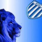Avaí FC anuncia planos de arrecadar US$20 milhões em ICO
