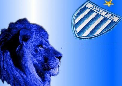 O Avaí FC, clube brasileiro de futebol, anunciou que está trabalhando em sua própria criptomoeda e planeja conduzir uma Oferta Inicial de Moedas (ICO) com o objetivo de arrecadar US$20 milhões.