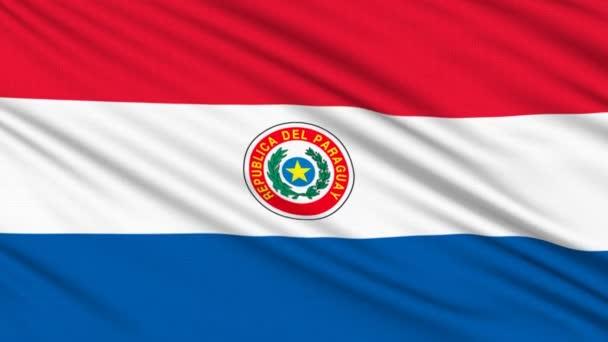 """O governo do Paraguai assinou um acordo com a empresa sul-coreana Commons Foundation, no âmbito do qual esta última construirá o que, segundo os parceiros, será """"o maior centro de dados para a mineração de criptomoedas do mundo""""."""