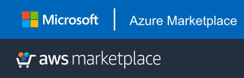 Ontology Amazon Microsoft